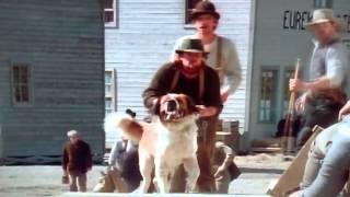 White Fang (1991) White Fang vs Buck