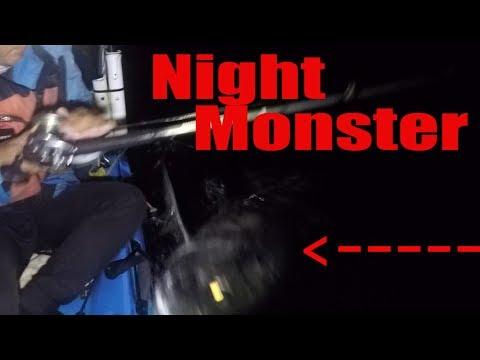Love Of Fishing:  Black Night, Big Waves, Big Sharks, Big Tarpon