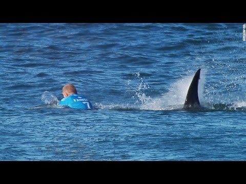 Pro surfer escapes shark attack during competition