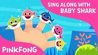 Shark Finger Family   Sing Along with Baby Shark   Pinkfong Songs for Children