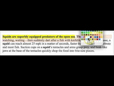 How to find the topic sentence #1 (basic)