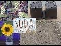 Jak soda oczyszczona może być pomocna w ogrodzie. 4 sposoby na wykorzystanie sody🌻🐜🐜
