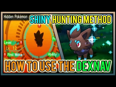 CHAINS DO NOT MATTER! How To Use The DexNav | Shiny Hunting Method | Pokemon ORAS