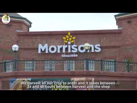 Morrisons | Farming | Brussels Sprouts | Our Farmers