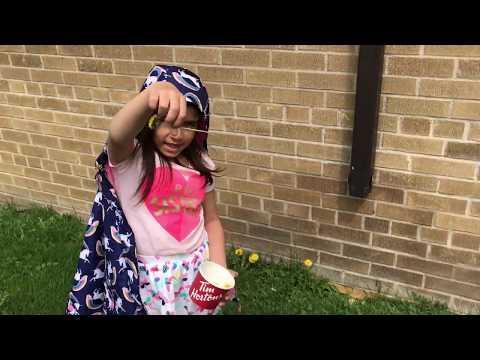 Flowers - Picking Dandelions - Sunny Day - Kindergarten Fun In The Sun - Kinder Playtime