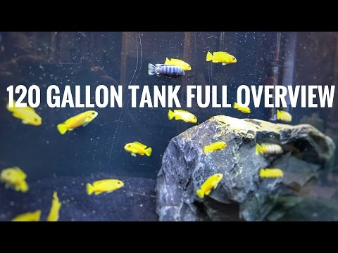 120 Gallon Tank - System Overview