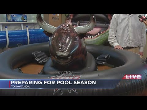 Pool toy trends