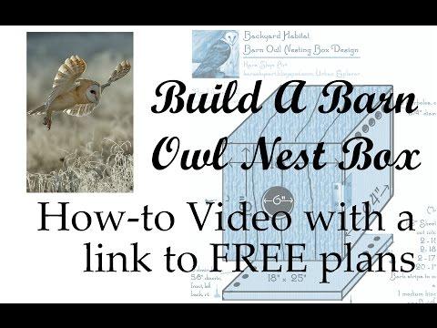 Build An Owl Nest Box | This Home-Studio