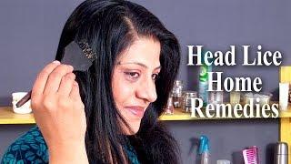 Home Remedies For Head Lice by Sonia Goyal @ ekunji.com