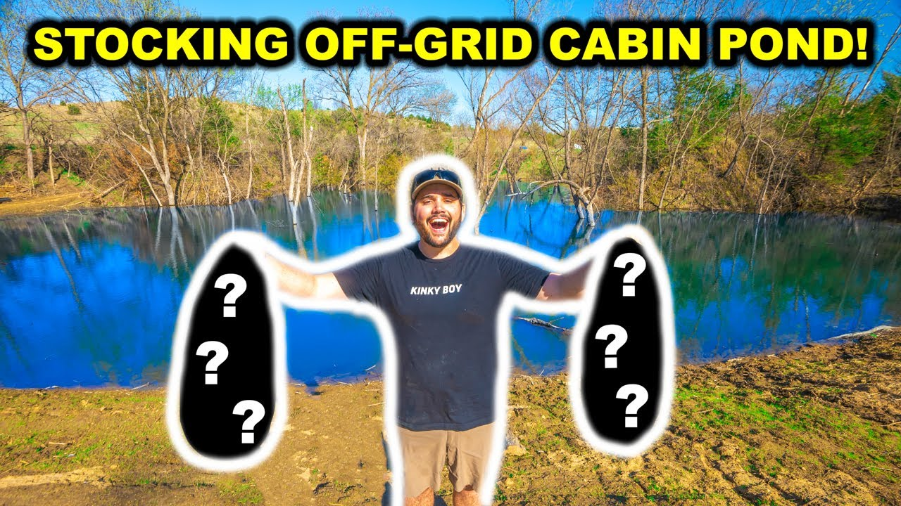 STOCKING My Off-Grid CABIN Backyard POND with BASS!!!