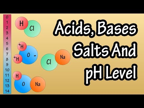 Acids And Bases Salts And pH Level - What Are Acids Bases And Salts - What Is The pH Scale