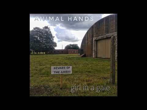 Fold Here - Animal Hands