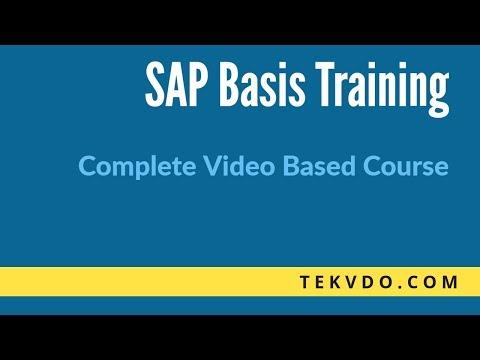SAP Basis Training - RFC Fundamentals Deep Dive - SAP Basis course