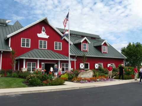 Trip to Warm Springs Ranch, breeding facility for the Anheuser Busch Clydesdales