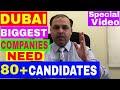 Dubai Biggest Companies Need 80 Plus Candidates || Urgent Jobs in Dubai