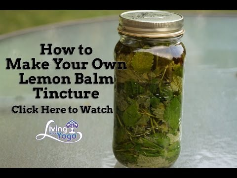 How to make Your Own Lemon Balm Tincture