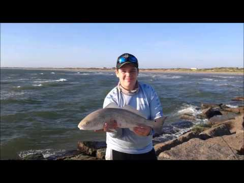 Fly fishing the Texas surf