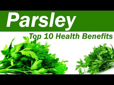 Top 10 Benefits of Parsley - Parsley Leaves: Benefits and Uses - Amazing Benefits Of Parsley