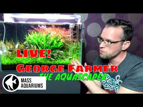 LIVE with George Farmer! Q&A with The AQUASCAPER