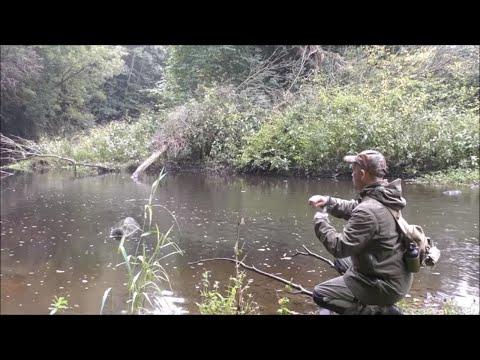 A Game Camera, Hobo Fishing Kit and some Fungi