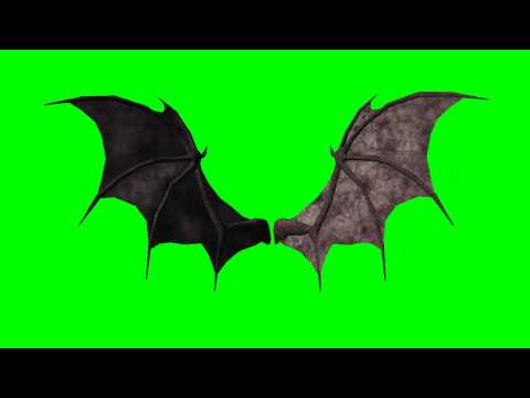 demon wings animated -   greenscreen effects