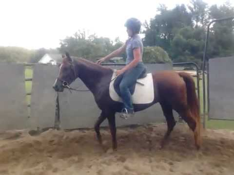 Lucy Ride #2  Intro with barrels with and squeezing through tight spots