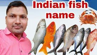fish names hindi Videos - 9tube tv