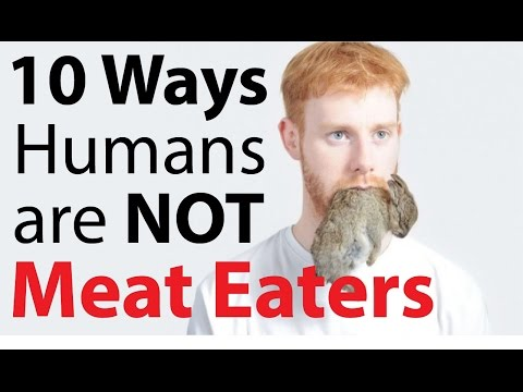 10 Ways Humans are NOT natural Meat Eaters