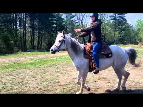 How To Slow Down Your Horse