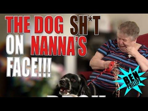 My bros dog poo on Nana face! PRANK!