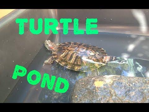 Pet Turtle Pond - Easy Setup & Care