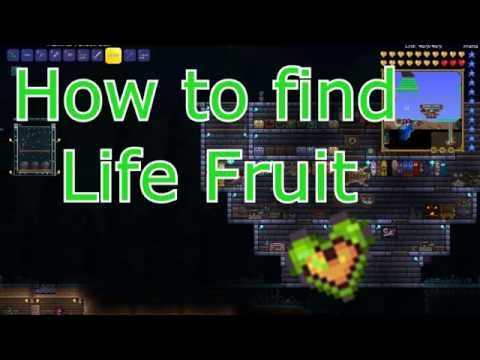 How to find Life Fruit! - Easy and Fast (Terraria)
