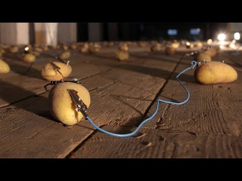 Generating Electricity From Potato Science Experiment