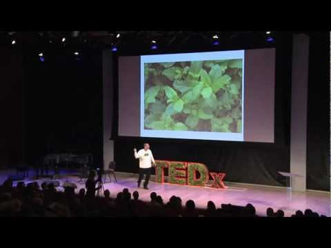 Green Bronx Machine -- growing our way into a new economy: Stephen Ritz at TEDxManhattan