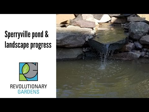 Sperryville Pond and Landscape Progress