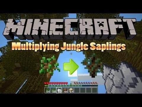 Docm77`s Minecraft Tutorial: Multiplying Jungle Saplings