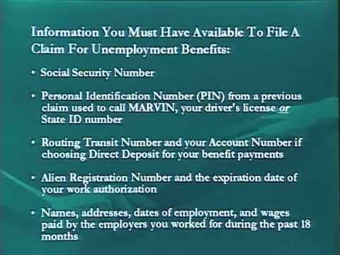 Filing Online Unemployment Claim in Michigan PART1
