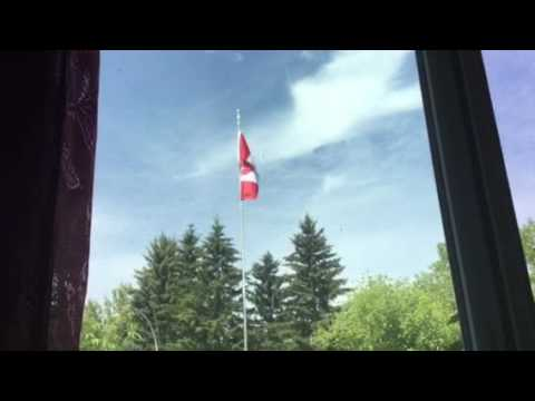 Canada flag beautifully blowing in the wind🇨🇦