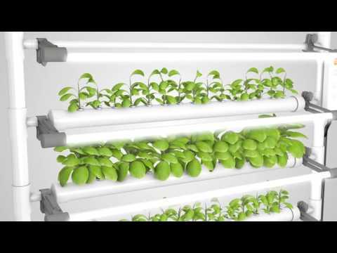 OPCOM Excellent D.I.Y. Hydroponics Indoor Farming & Gardening