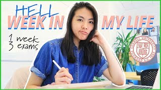 Download College Week in my Life at Cornell University 2019 (Freshman Year VLOG)   Katie Tracy Video