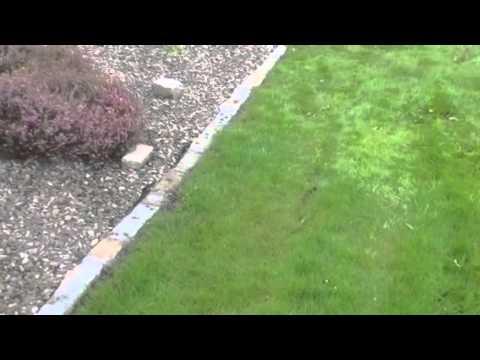 How to fit Salvage Stone garden edging around a Flowerbed in Ireland
