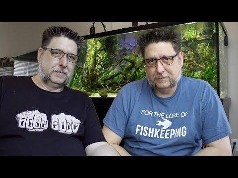 Fish Soup 4 : Arise