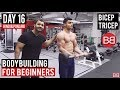 | Day 16 | Bicep & Tricep  Workout Routine for Beginners! (Hindi / Punjabi)