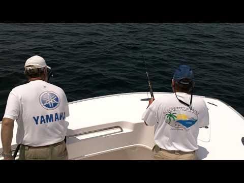 King Mackerel fishing off of Oak Island, NC  (May 2011)
