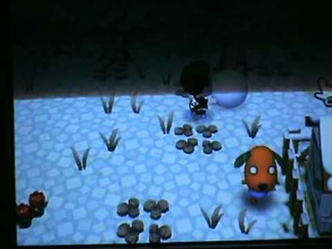 How to get a snowman on animal crossing city folk.