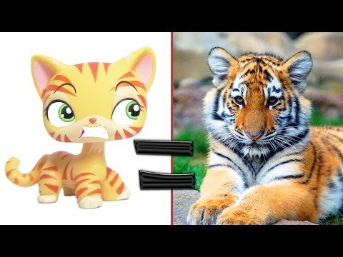 LPS in Real Life! #3 Littlest Pet Shop Wild Animals and Popular Pets in Real Life | MLP Fever