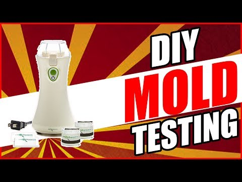 MyMoldDetective Review DIY Mold Testing - Test For Mold Cheap 🤢 (2018)