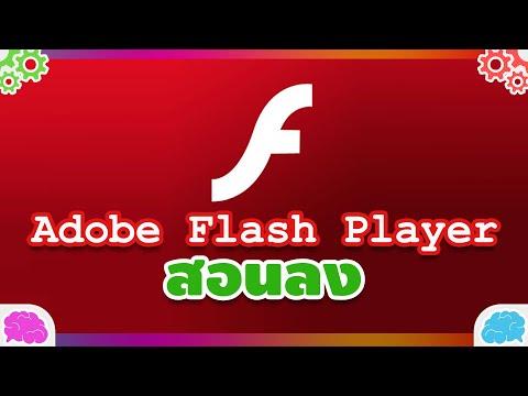 สอนลง Adobe Flash Player คืออะไร? ทำอะไรได้?