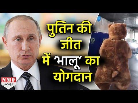 Russia में 'भालू' ने भी चुना President, बूथ पर किया वोट