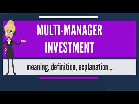 What is MULTI-MANAGER INVESTMENT? What does MULTI-MANAGER INVESTMENT mean?